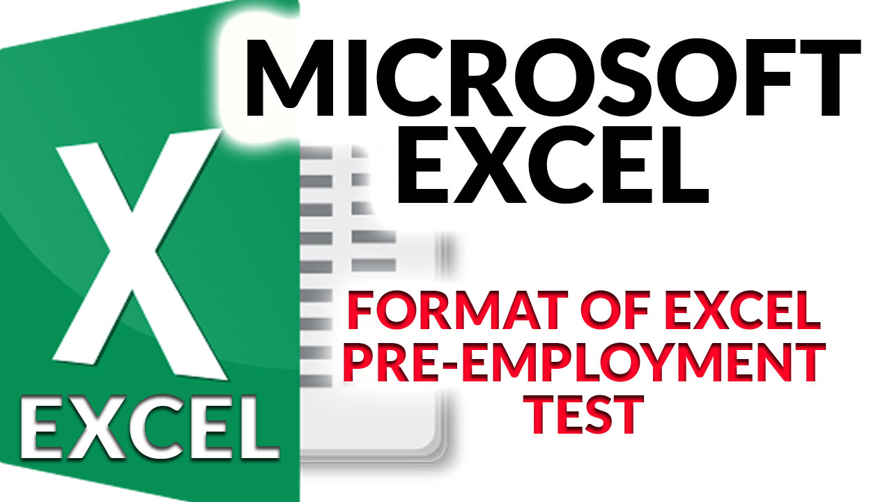 Typical Format of Excel Assessment Test